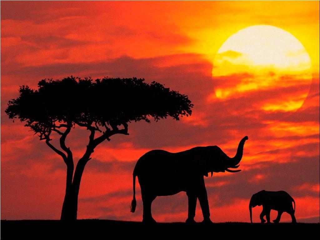 Image result for kenya